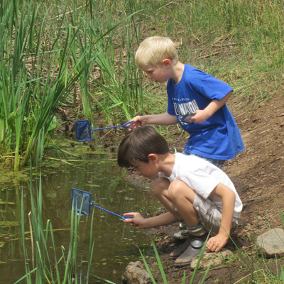 Water Wonders Summer Camp
