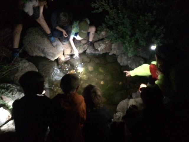 Wilderness Survivors II | July 12th – 16th | Grade 3-5