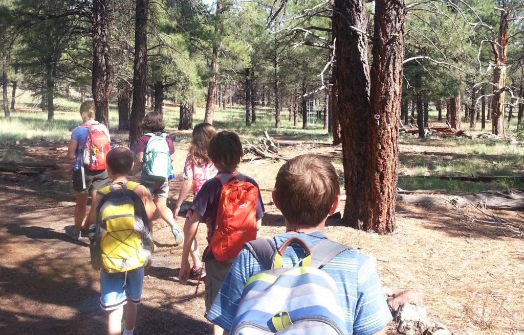 Wilderness Survivors I | July 5th – July 9th | Grade K-2