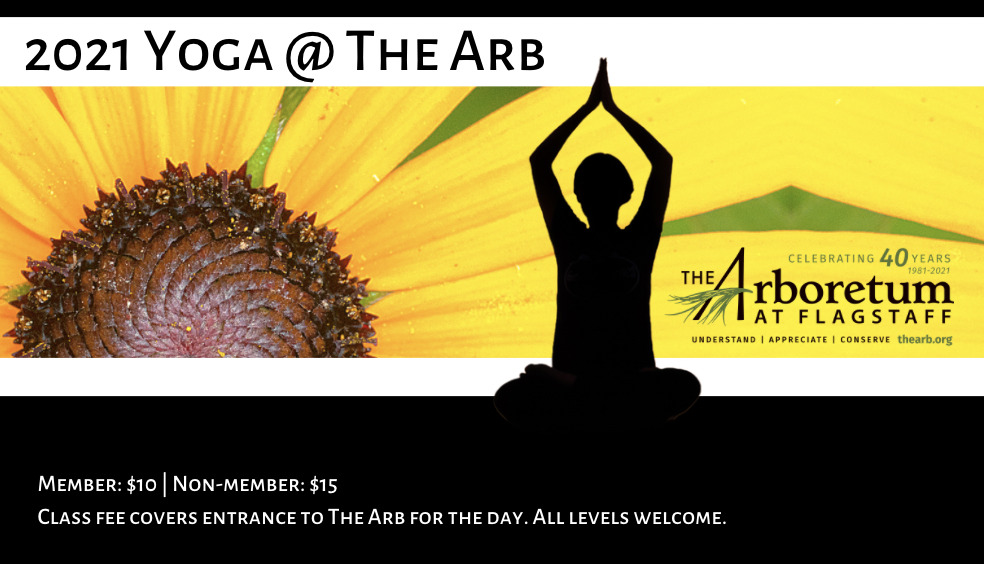 Yoga @ The Arb: Member: $10 | Non-member: $15 Class fee covers entrance to The Arb for the day. All levels welcome. Cristina Bowen has been teaching yoga since 2004. She began her practice in Colorado, but did her formal training in Phoenix before moving to Japan where she continued her teaching. She has trained all over Asia; from Bali to Bhutan and has experienced Yoga on many levels. Saturdays, 9 am to 10 am. outside. Limited to 10 socially-distanced participants. Reservations required at TheArb.org. May 1, 8, 15, 22, 29 | June 5, 26 | July 3, 10, 24, 31 | August 7, 14, 21, 28 | September 11, 25