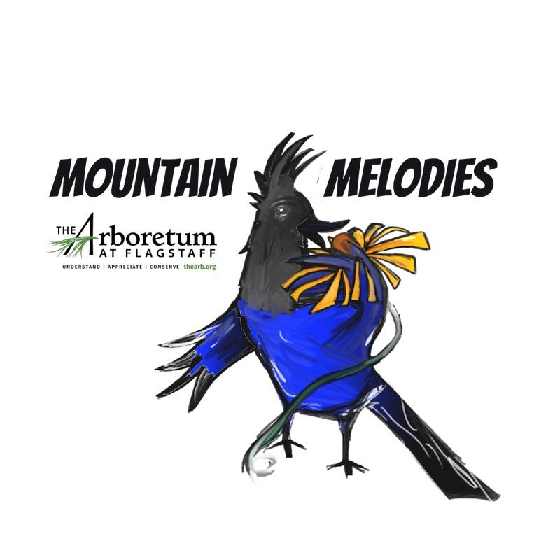 Mountain Melodies:  Trevor Turville