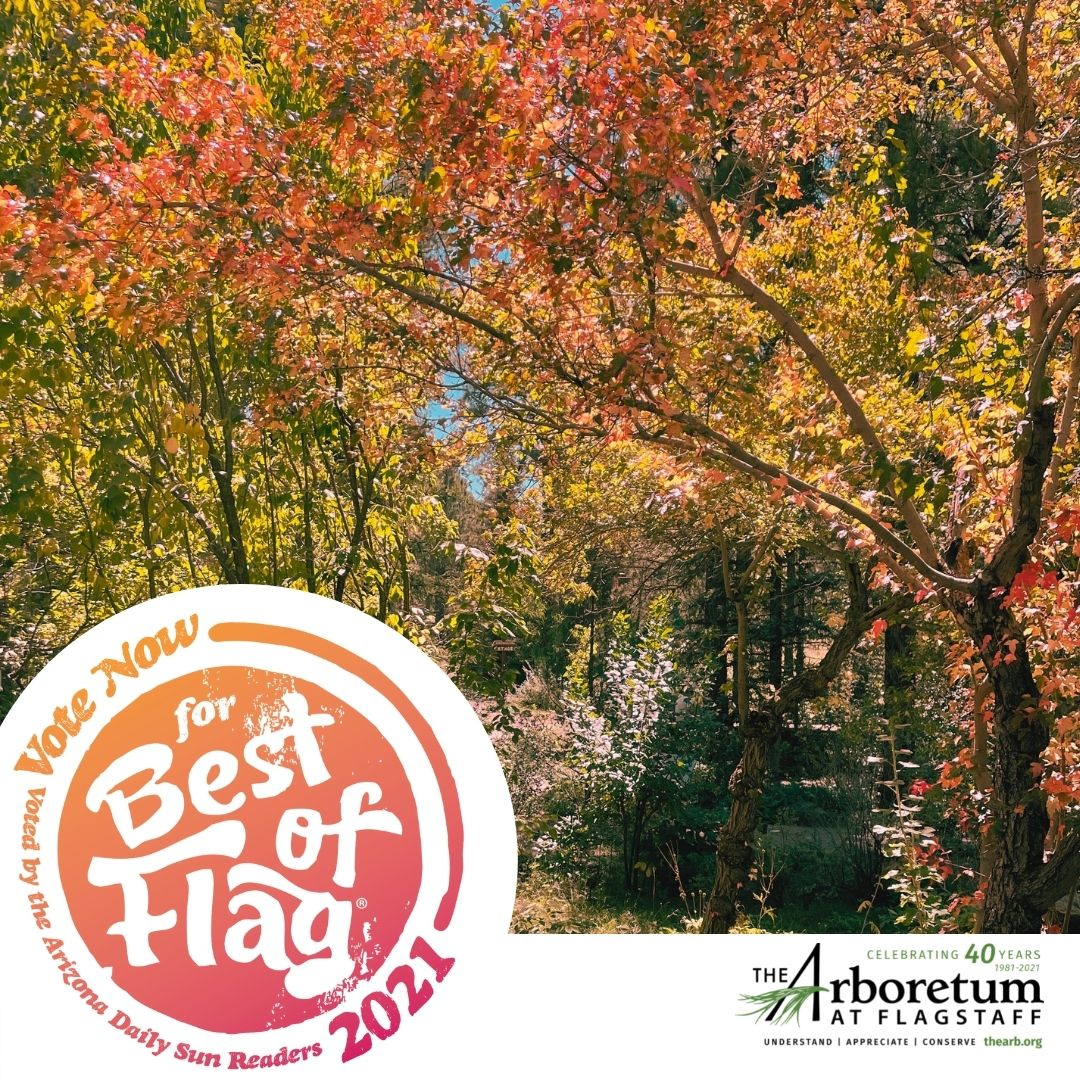 Vote for us for Best of Flagstaff - Best Northern Arizona Attraction!!