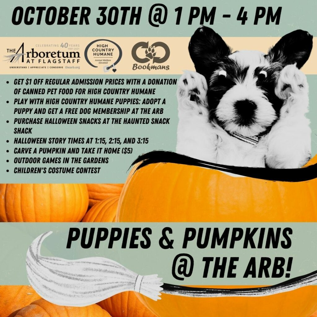 Get $1 off regular admission prices with a donation of canned pet food for High Country Humane Play with High Country Humane Puppies: Adopt a puppy and get a free dog membership at The Arb Purchase halloween Snacks at the haunted snack shack Halloween story times at 1:15, 2:15, and 3:15 Carve a pumpkin and take it home ($5) Outdoor games in the gardens Children's costume contest