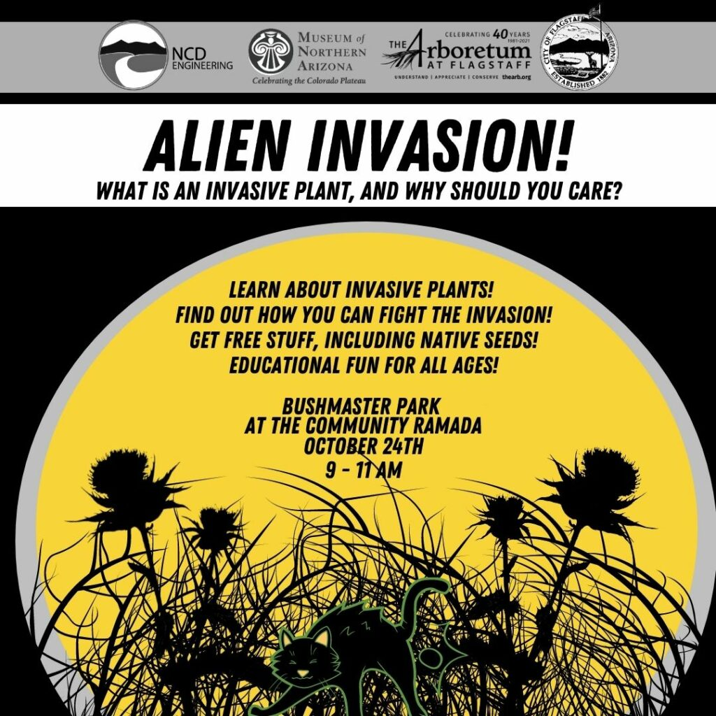 Alien INvasion: Learn about Invasive Plants
